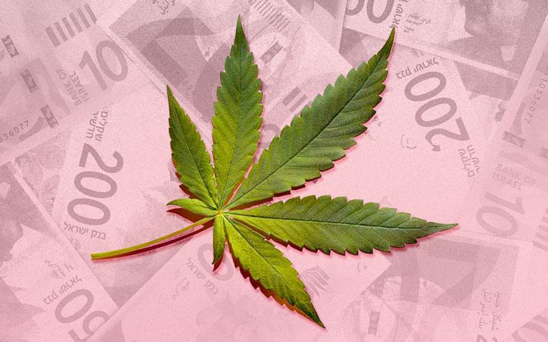 Cannabis-Stock-01